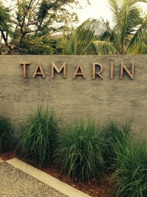 Welcome to Tamarin :)