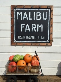 Fresh Organic Local. who are we to argue with that?